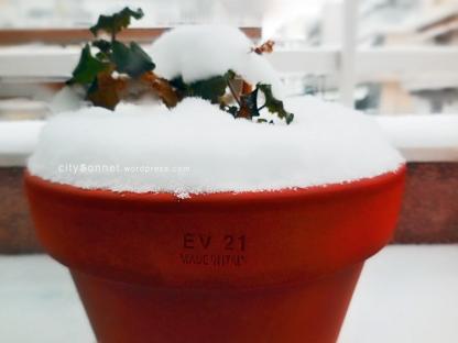 snowpot