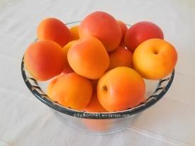 apricotbowl