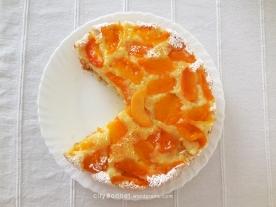 apricotcakes
