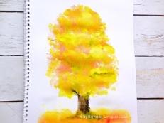 treefall
