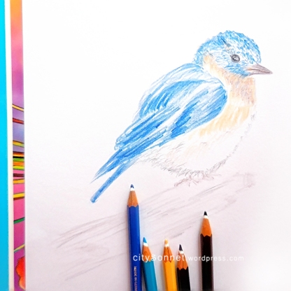 birdpencil1