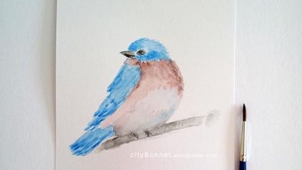 birddrawing1