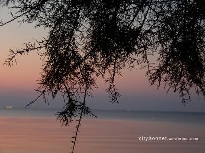 sunset76